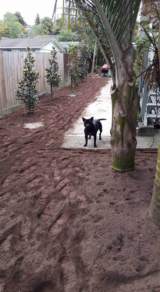 Lawn install