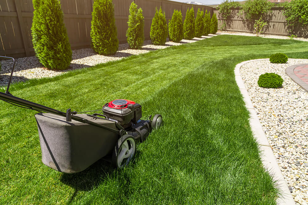 lawn-mower-PBXTHML